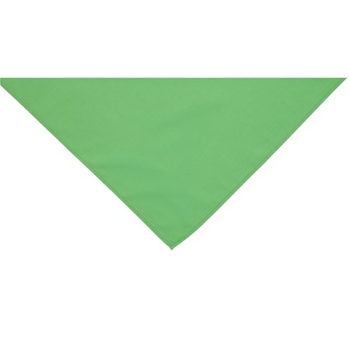 Green neckerchief scarf
